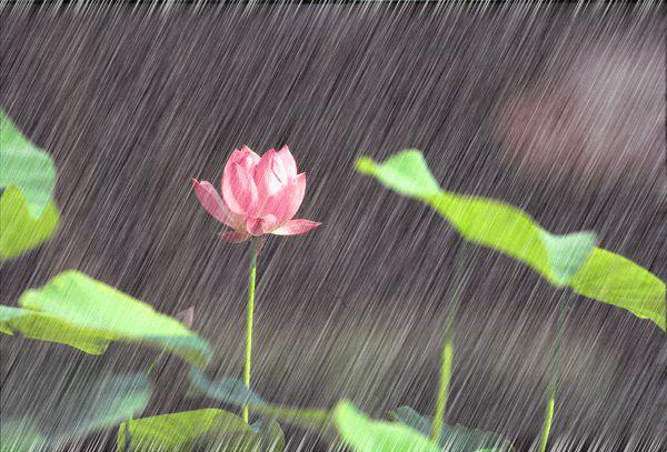 梅雨天时看玄机