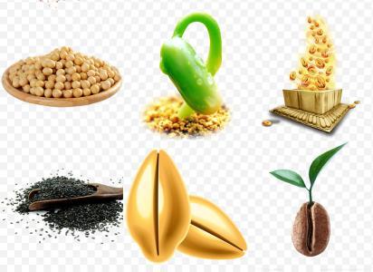 让种子更有活力的法宝——除湿机