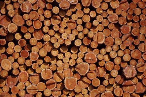木材除湿的必要性
