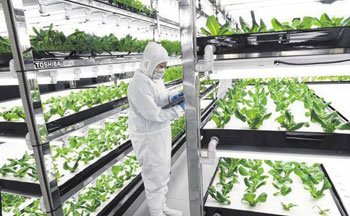 为室内绿化园添置除湿机需要考虑哪些因素?