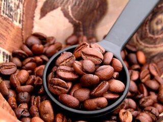 潮湿天气咖啡豆怎么保存?