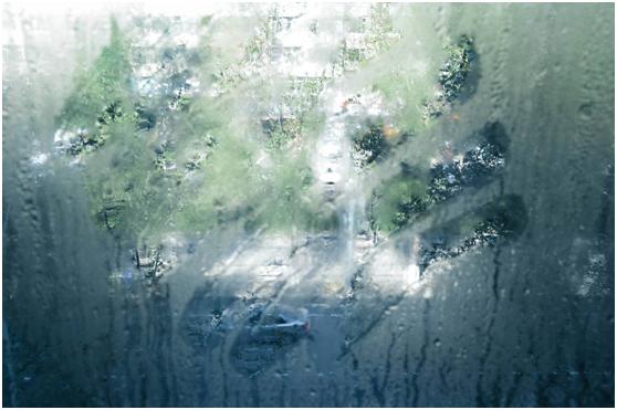 跨年度的阴雨,潮湿来袭