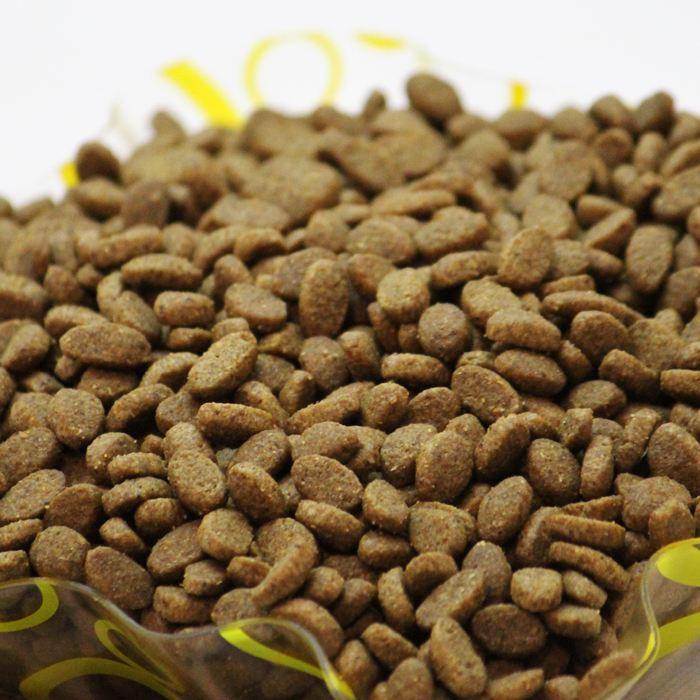 潮湿环境下如何保存猫粮?