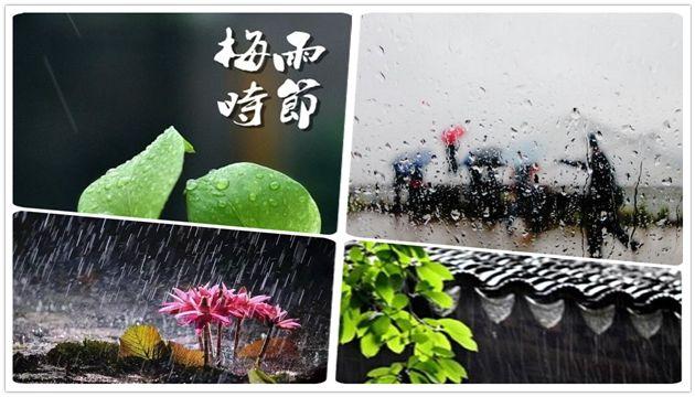 除湿机选的好,解决梅雨天烦恼