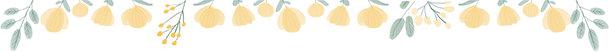 咽下去的西瓜籽,会从肚子里长出来吗?
