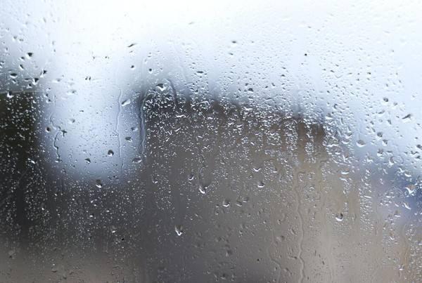 梅雨季,你所不知道的除湿妙招