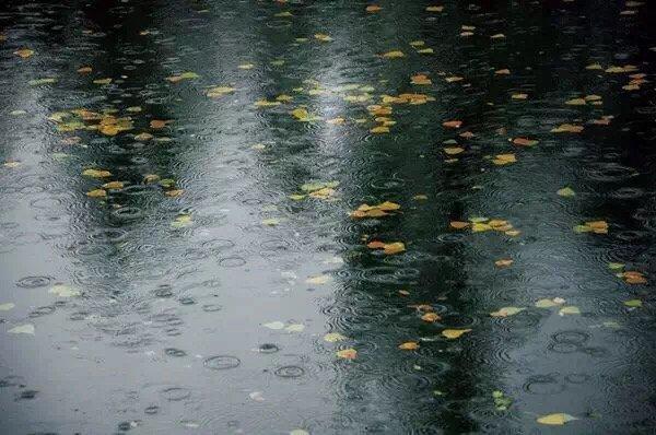 """今年的""""华西秋雨""""脾气有点躁 家里注意防潮 尤其四川!"""