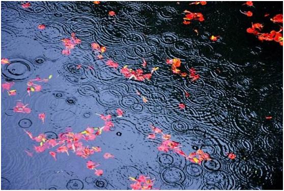 深秋雨季应该选购怎么样合适的电器