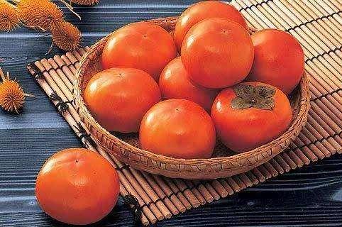 柿子烘干用耐高温除湿机排湿
