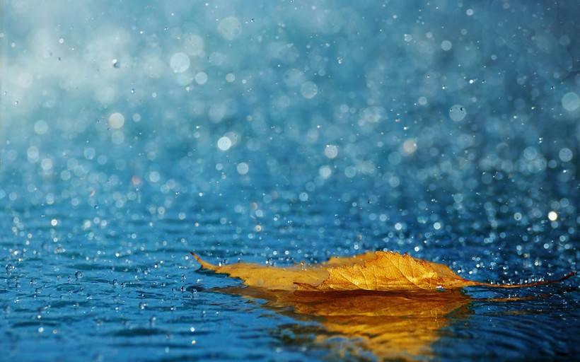 经常下雨天,运用除湿机能够不必受大潮湿困扰