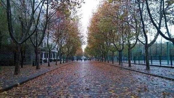秋冬季节,家居生活如何防湿