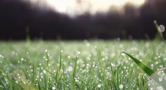 暖春潮湿,防疫加潮湿到底该怎么办?