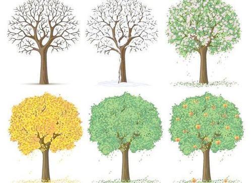 季节变化对除湿机效率的影响