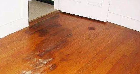 潮湿天地板发霉是常态