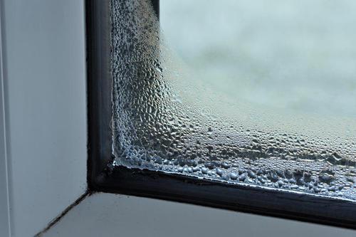 家里太潮湿会成为细菌的温床