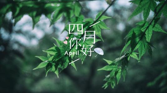 四月已至,告别潮湿拥抱干爽!
