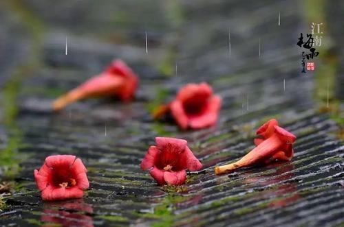 梅雨天高效智能除湿机