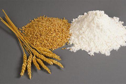 转轮除湿机在小麦储存中的作用