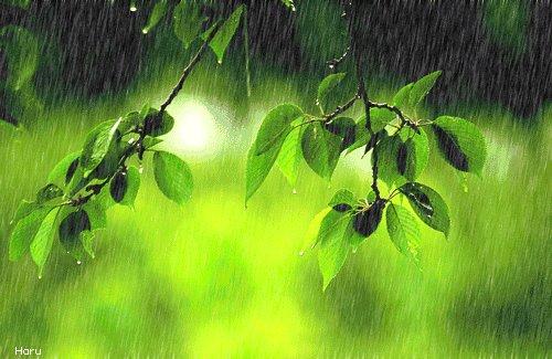 梅雨季又来了,需要用除湿机