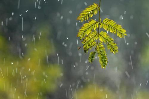 空调可以除湿,为什么还需要家用除湿机呢?